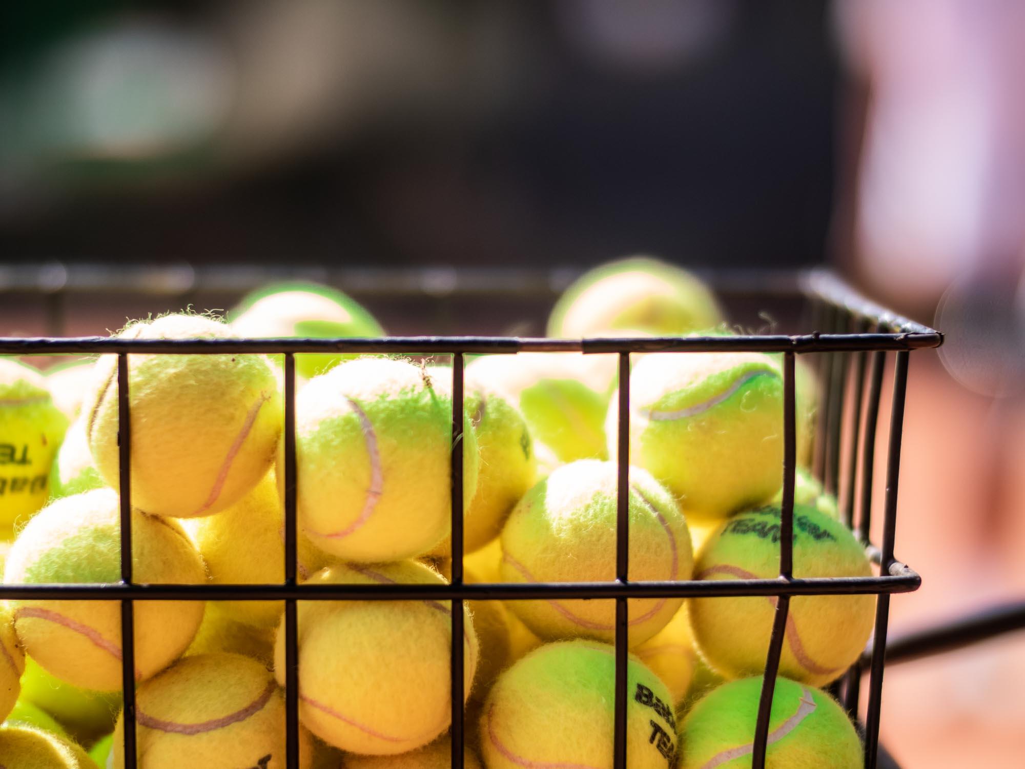 Daniel Panajotti palline tennis