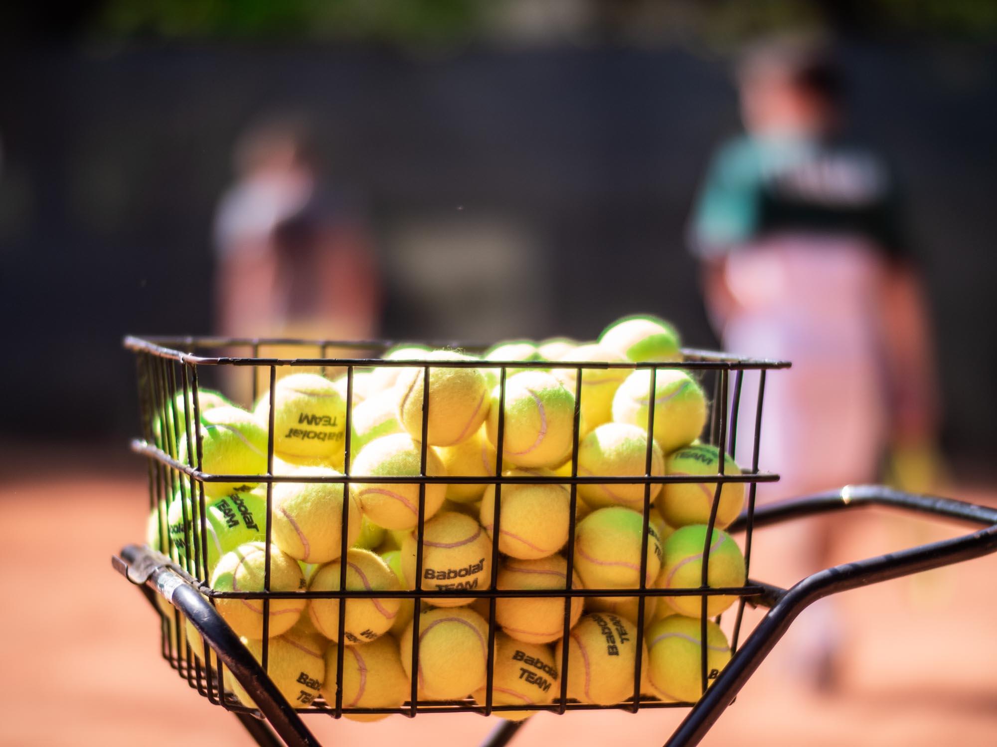 Daniel Panajotti palline da tennis