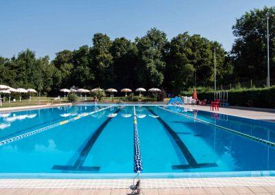 Daniel Panajotti piscina